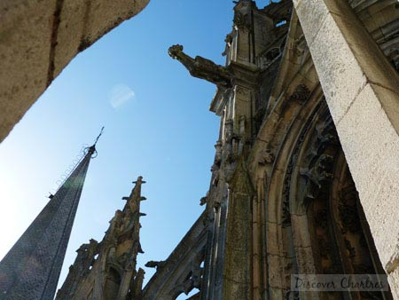 The sculptures, the gargoyle and the top of the south tower