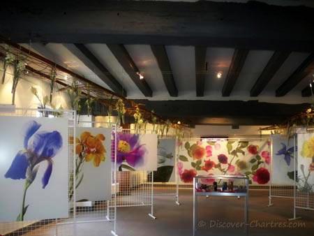 Exhibition at Maison du Saumon,Chartres