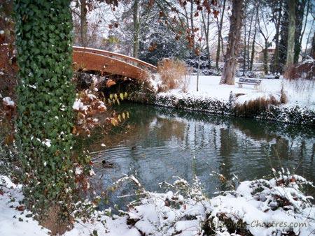 Winter color in La Petite Venise